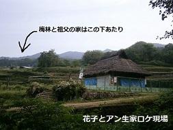 hanako8.jpg